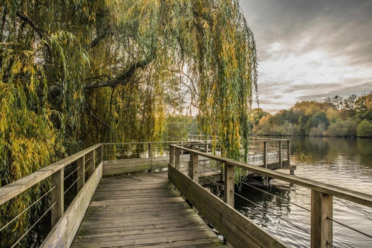 Nantes un pont en bois sur l'Erdre