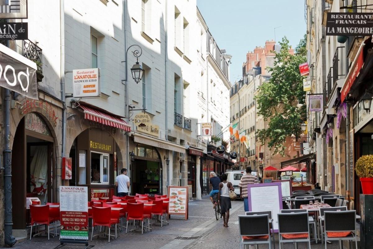 Nantes vue dune rue commercante