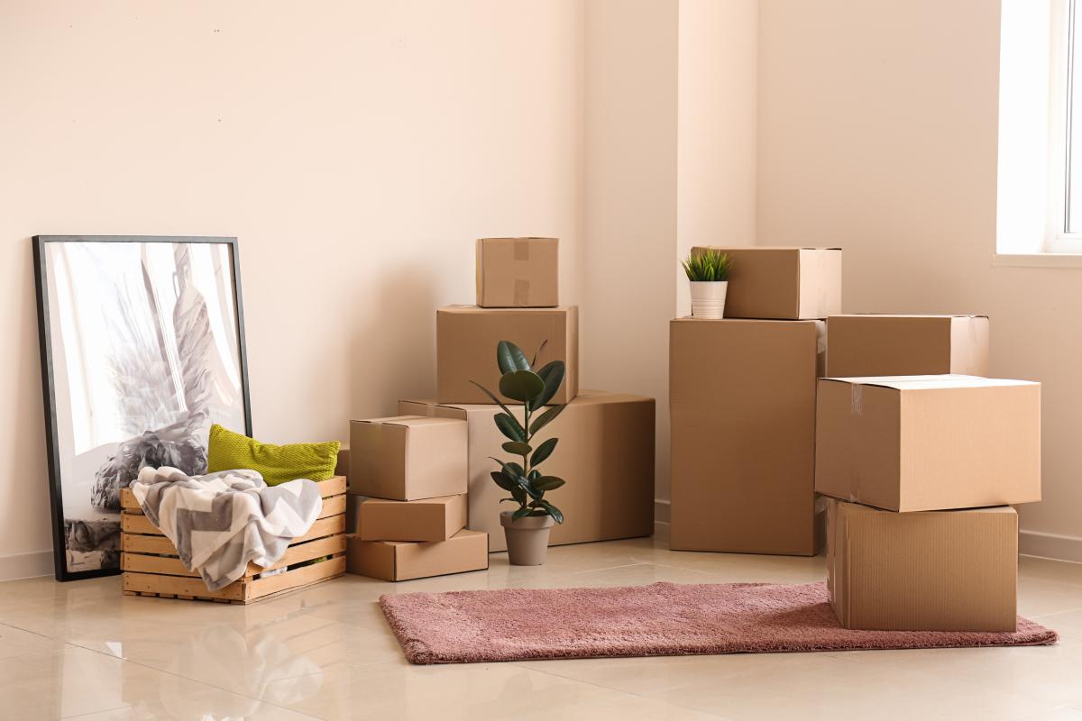 location appartement Nantes - des cartons dans un logement neuf
